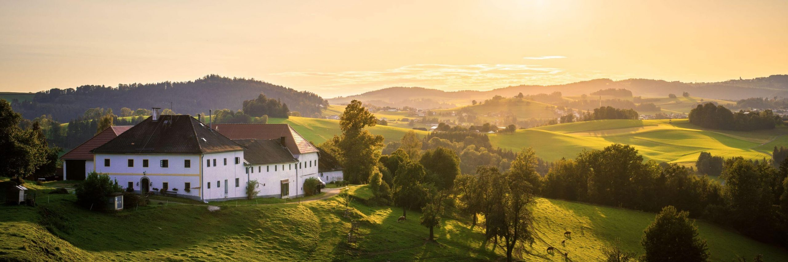 Yoga Retreat Österreich