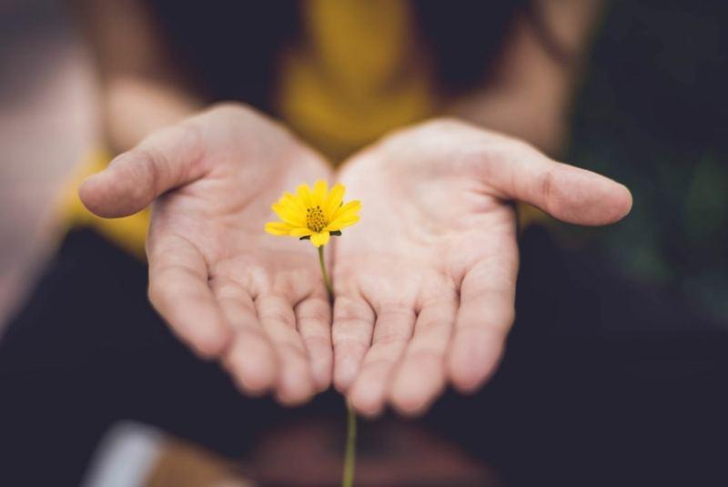 Meditation-Gehen-Liebe